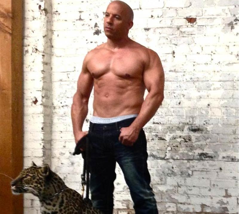 The Ultimate Vin Diesel Workout For Big Biceps Free Pdf