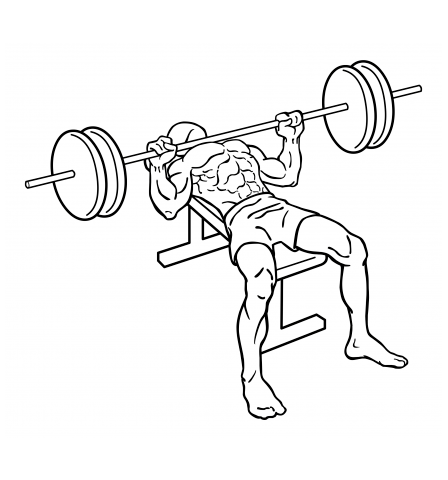 3 Quick Chest And Tricep Workouts For A Rock Solid Chest